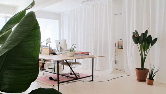 Specht-graphic-design-studio